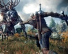 Ten New Full HD screenshots of The Witcher 3: Wild Hunt